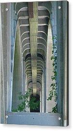 Bridge Spine Acrylic Print by Bruce Carpenter