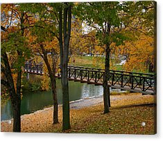 Acrylic Print featuring the photograph Bridge To Fall by Elizabeth Winter