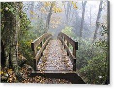 Bridge To Rough Ridge 07 Acrylic Print