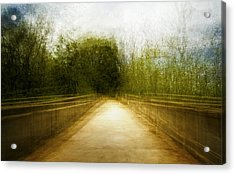 Bridge To The Invisible Acrylic Print by Scott Norris