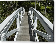 Bridge To Woods Acrylic Print
