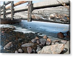 Bridges Acrylic Print by Minnie Lippiatt