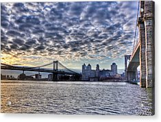 Bridges Of New York Acrylic Print
