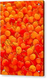 Bright And Orange Acrylic Print by Scott Campbell