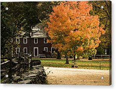 Acrylic Print featuring the photograph Bright Orange Autumn by Jeff Folger