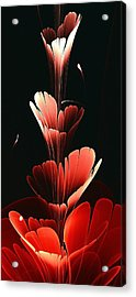 Bright Red Acrylic Print
