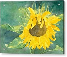 Bright Sunflower Acrylic Print