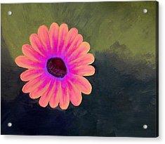 Brighten My Day Acrylic Print