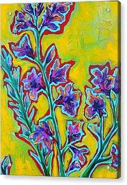 Brilla Acrylic Print by Dawn Gray Moraga