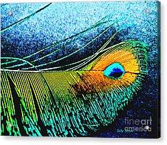 Brilliant Feather  Acrylic Print