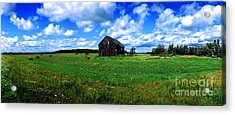 Acrylic Print featuring the photograph Brimley Farm Near  Sault Ste Marie Michigan  by Tom Jelen