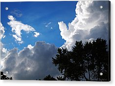 Acrylic Print featuring the photograph Bring It On by Deborah Fay