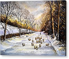 Bringing Home The Sheep Acrylic Print by Andrew Read