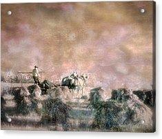Bringing In The Sheaves II Acrylic Print
