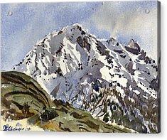Bristenstock Mtn Acrylic Print by David Gilmore