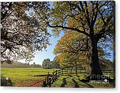 British Autumn Acrylic Print