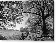 British Landscape Acrylic Print