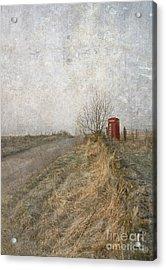 British Phone Box Acrylic Print by Liz  Alderdice