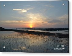 Acrylic Print featuring the photograph Broad Creek Sunset II by Carol  Bradley