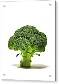 Broccoli Head On Whte Background Acrylic Print by TS Photography