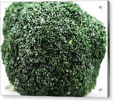 Broccoli Acrylic Print by John Rizzuto