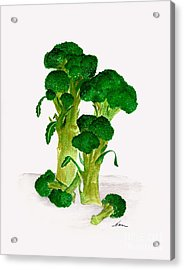 Broccoli Stalks Bright And Green Fresh From The Garden Acrylic Print by Nan Wright
