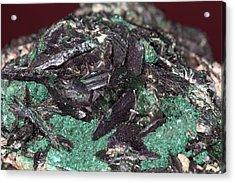 Brochantite Crystals Acrylic Print by Science Photo Library