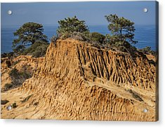 Acrylic Print featuring the photograph Broken Hill At Torrey Pines by Lee Kirchhevel