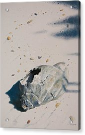Broken Home Abandoned Acrylic Print by Christopher Reid