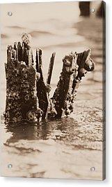 Broken Pier II Acrylic Print by Hillery Bosarge