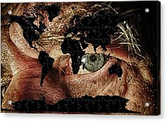 Broken World Puzzle Acrylic Print