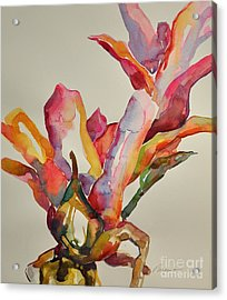Bromeliad #4 Acrylic Print