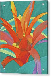Acrylic Print featuring the painting Bromeliad Glow by Margaret Saheed