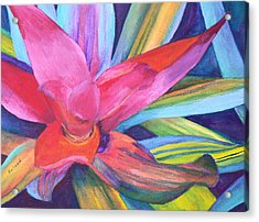 Acrylic Print featuring the painting Bromeliad Pink by Margaret Saheed