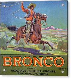 Bronco Oranges Acrylic Print by American School