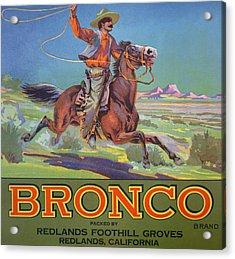 Bronco Oranges Acrylic Print