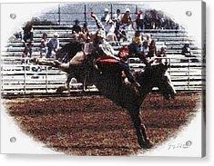 Bronco Rider Reno Rodeo Acrylic Print