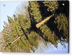 Bronson's Pond Acrylic Print