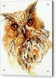 Bronzai The Owl Acrylic Print