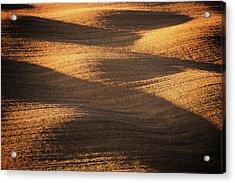 Bronze Waves Acrylic Print by Philipp Klinger