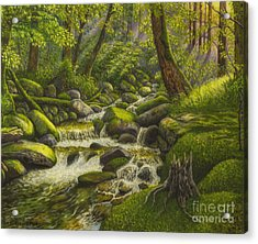 Brook In The Forest Acrylic Print