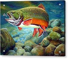 Brook Trout Breakfast Acrylic Print by Alvin Hepler