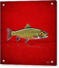 Brook Trout On Red Leather Acrylic Print