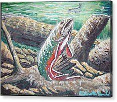 Brook Trouts Buff Ay  Acrylic Print