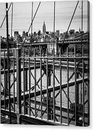 Brooklyn Bridge 2853 Bw Acrylic Print by Deidre Elzer-Lento