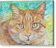 Brown Cat Acrylic Print by PainterArtist FINs husband Maestro