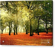 Acrylic Print featuring the photograph Brown Colors by Boon Mee