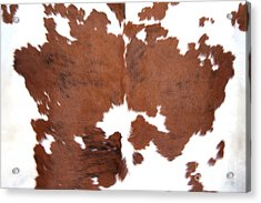 Brown Cowhide Acrylic Print