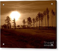 Brown Fog Acrylic Print