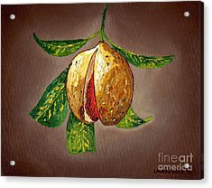 Acrylic Print featuring the painting Brown Glow Nutmeg by Laura Forde